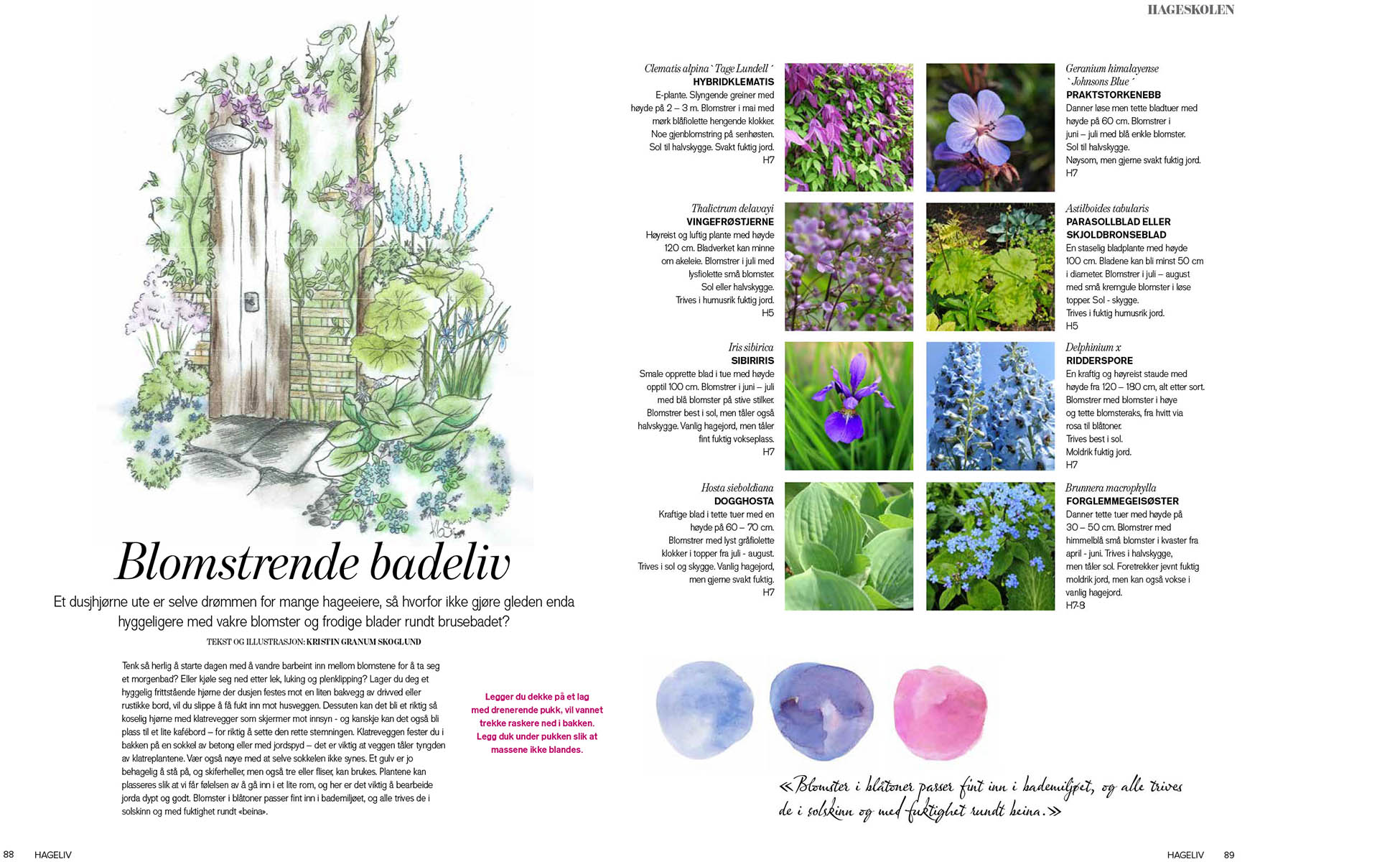 Artikkel Blomstrende badeliv