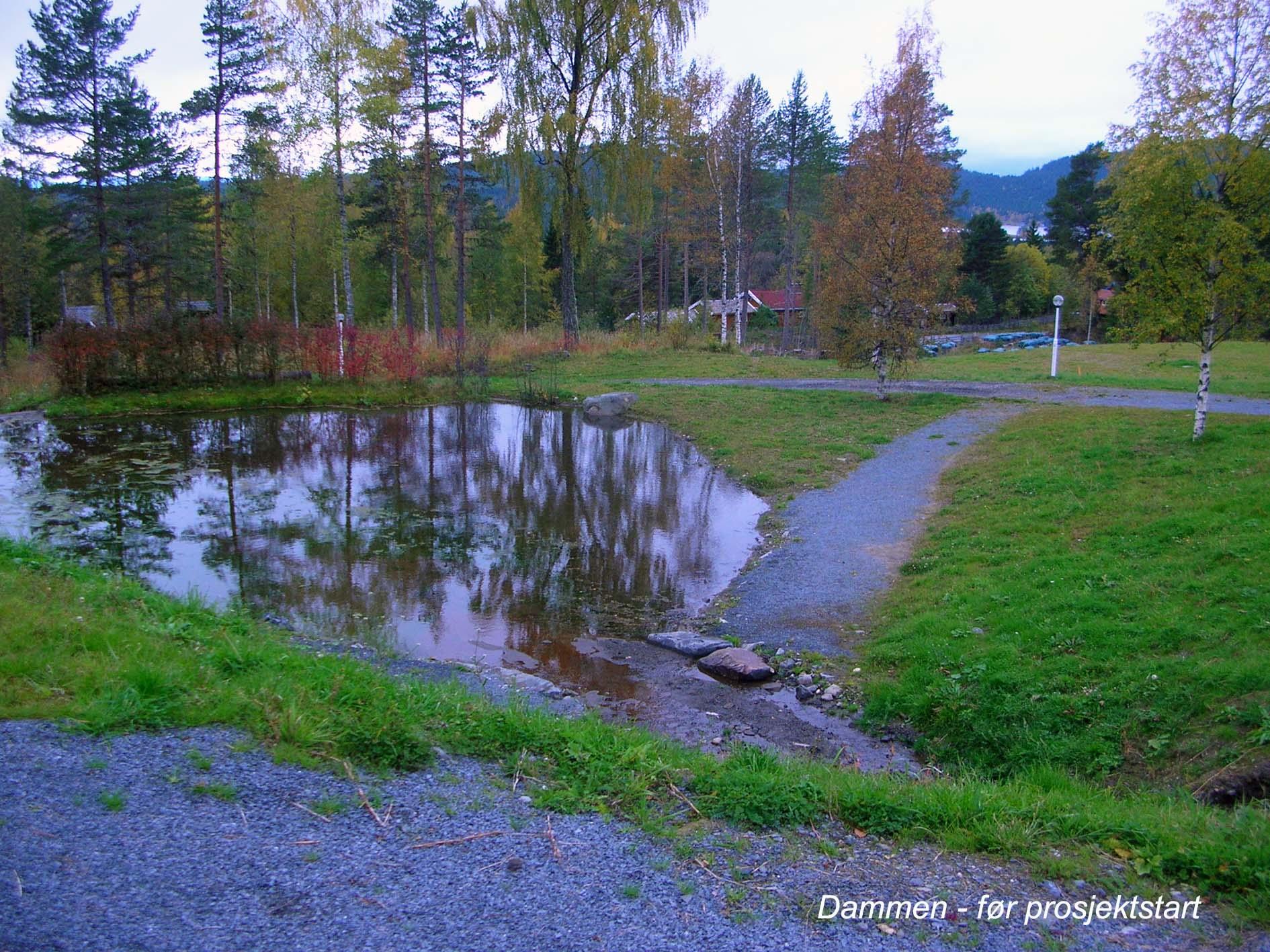 dammen før projektstart