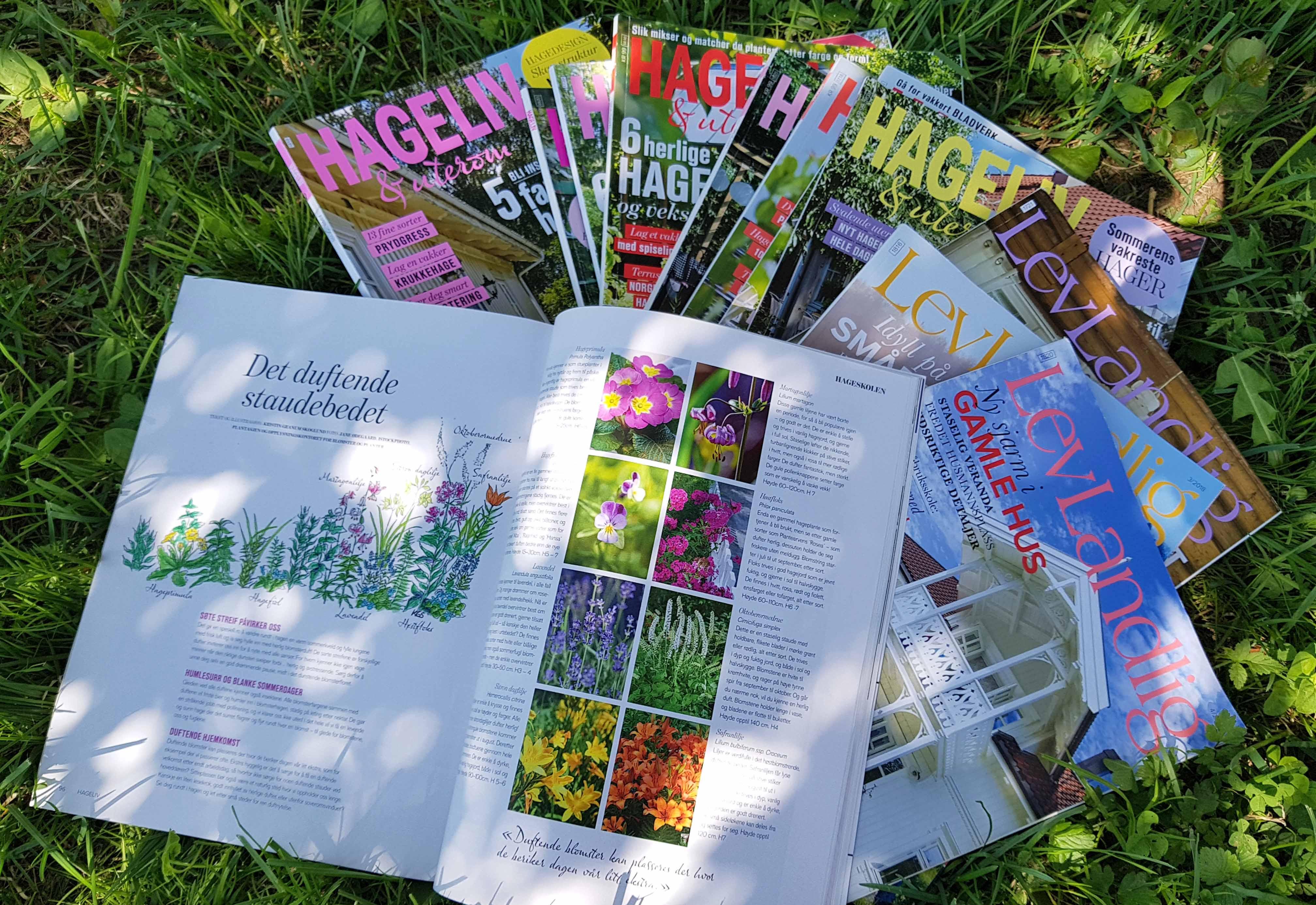 Collage tidskrifter