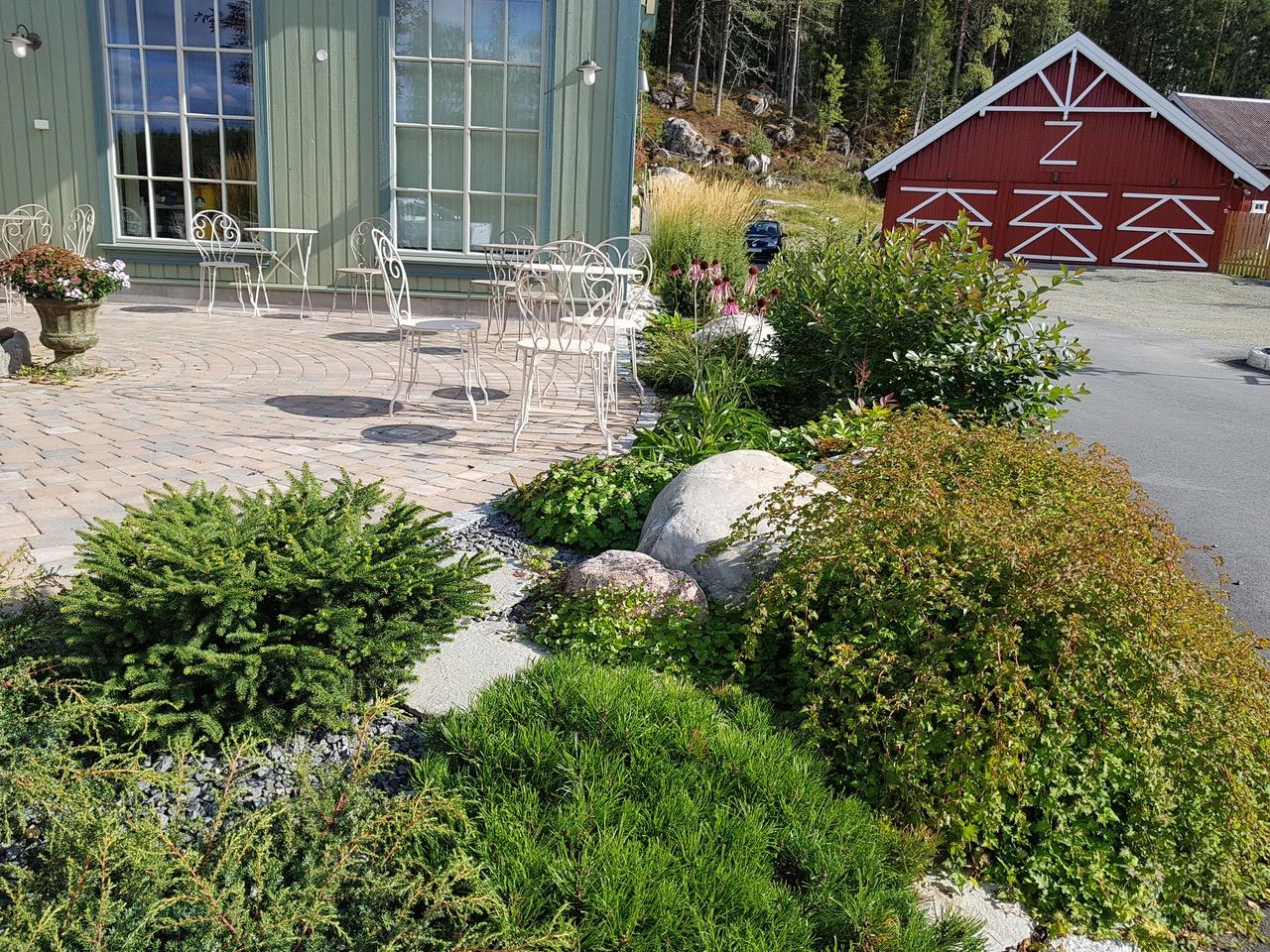 Frodig vekst rundt terrassen