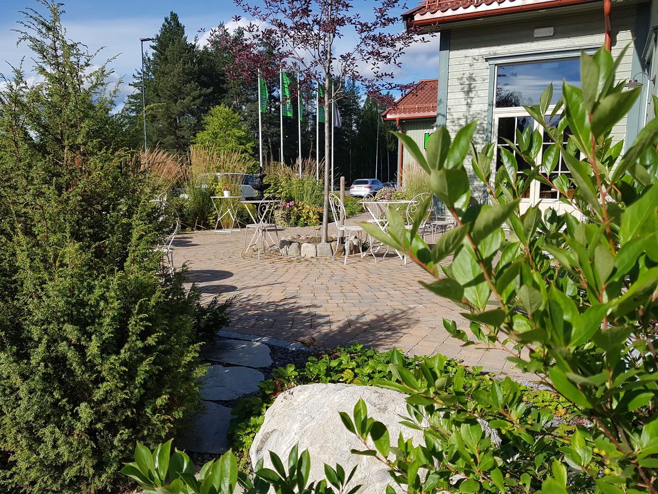 frodig og grønt rundt terrassen