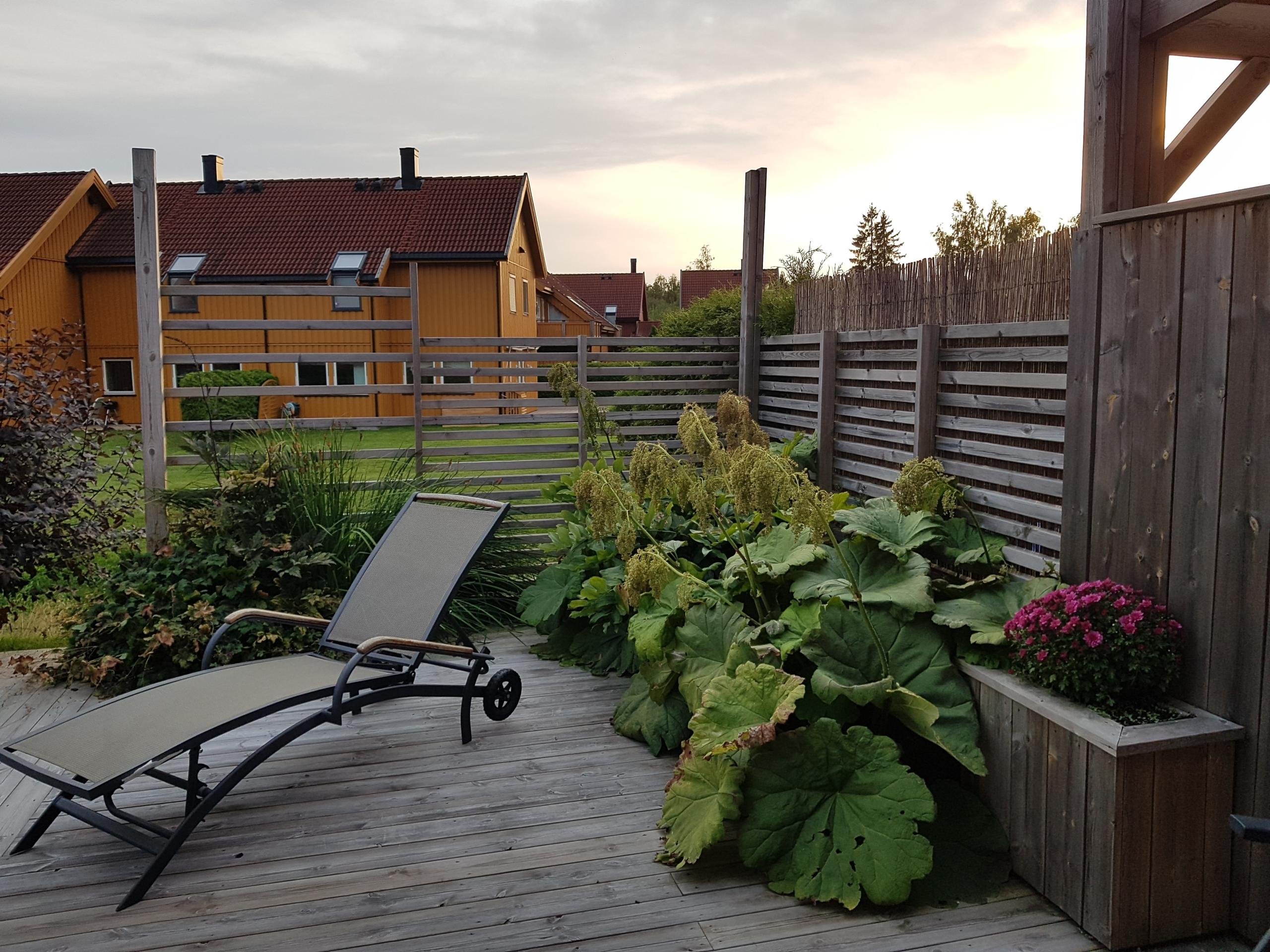 Leilighet terrasse skjermet for innsyn